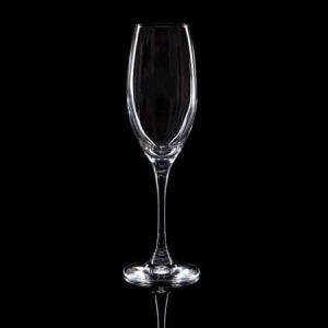 Plain Crystal Champagne Flute