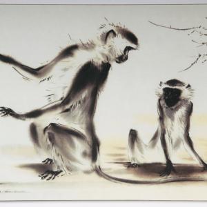 Table Mat – Monkeys