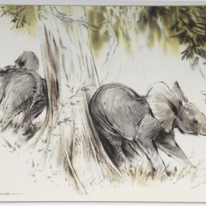Table Mat – Elephants