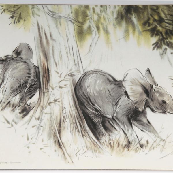 Table Mat – Elephants