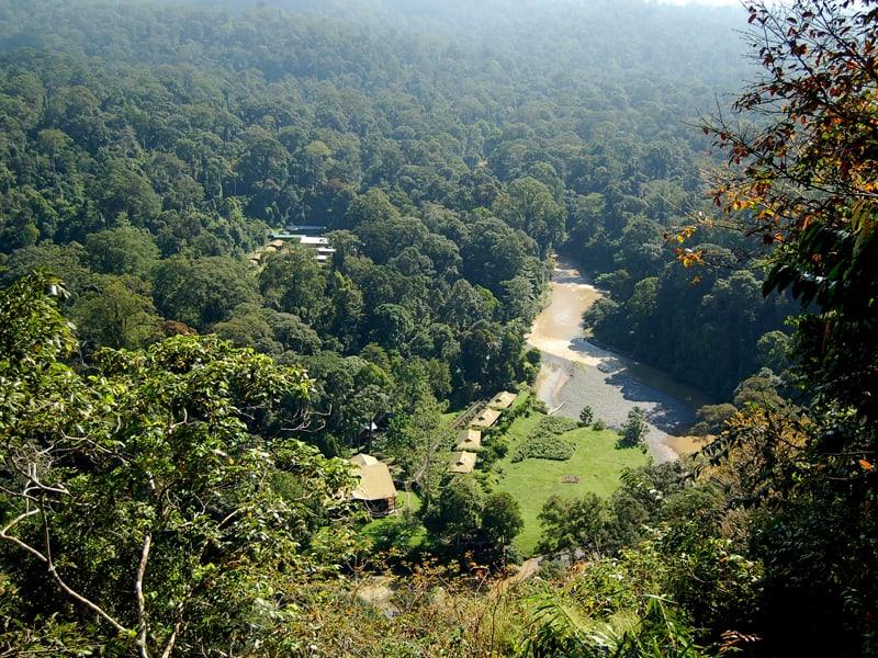Borneo - Danum Valley