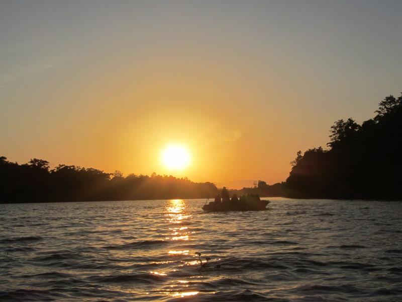 Borneo - Kinabatangan River