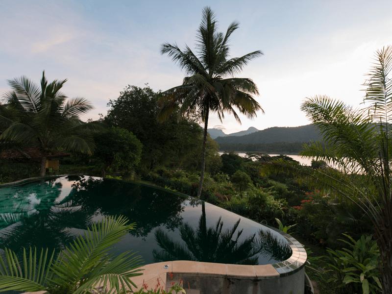 Bougainvillea - Views