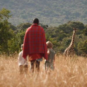 Mara Bush Houses - Giraffe