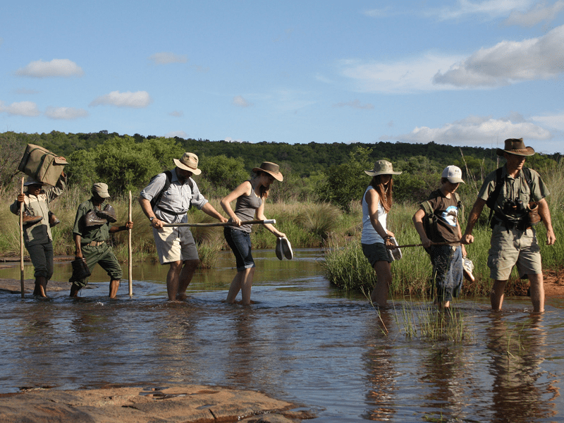 Jembisa - Guided Walks