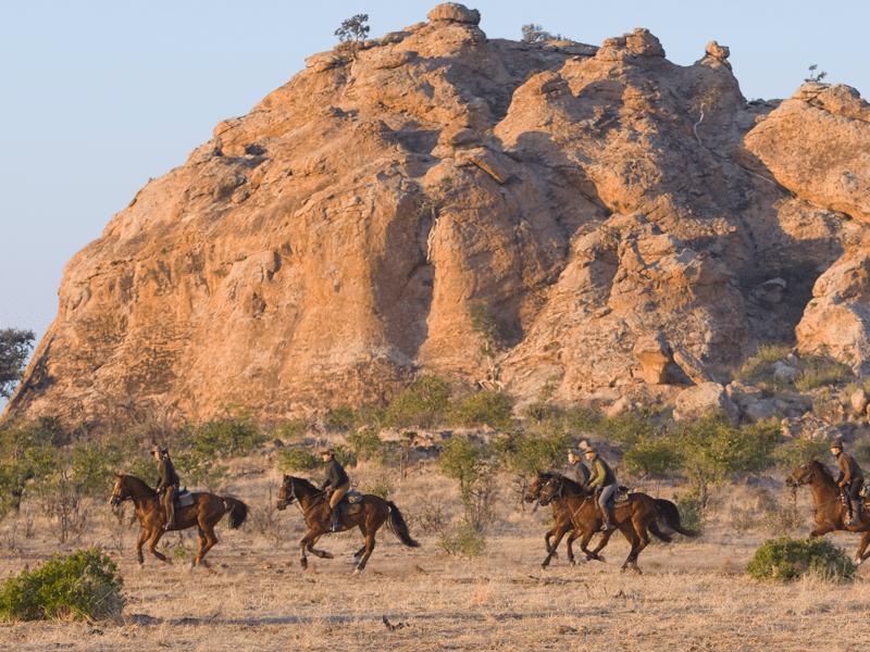 Bush And Lodge Riding Safari
