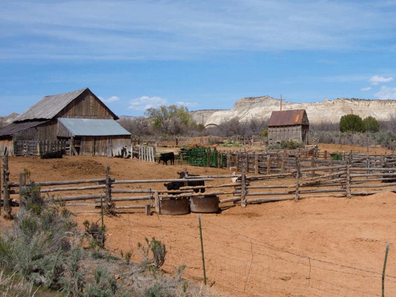 Arizona And Utah - Morman Homestead