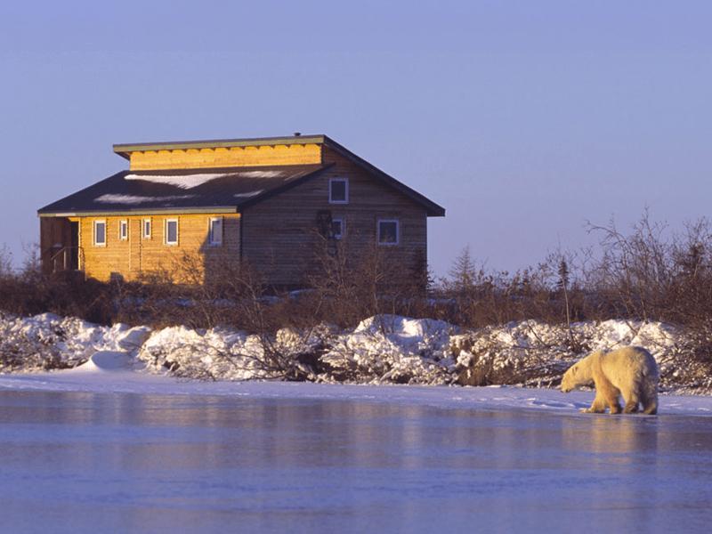 Canada - Polar Bears - Lodge