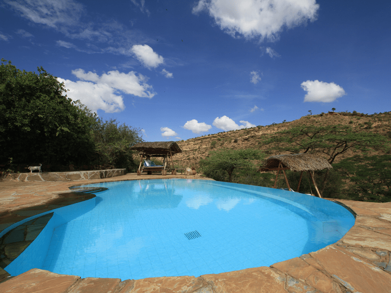 Kenyan Safari - Pool