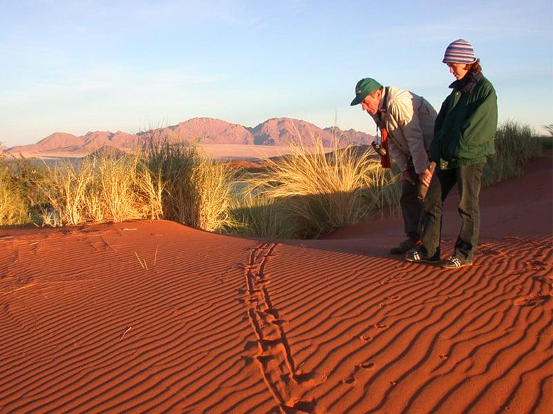 Namibia - Tracking