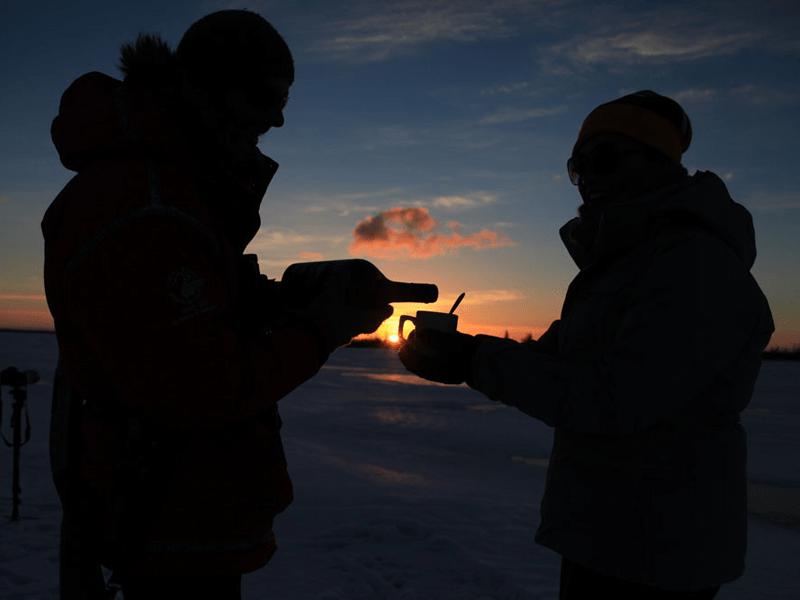 Canada - Polar Bears - Refreshments
