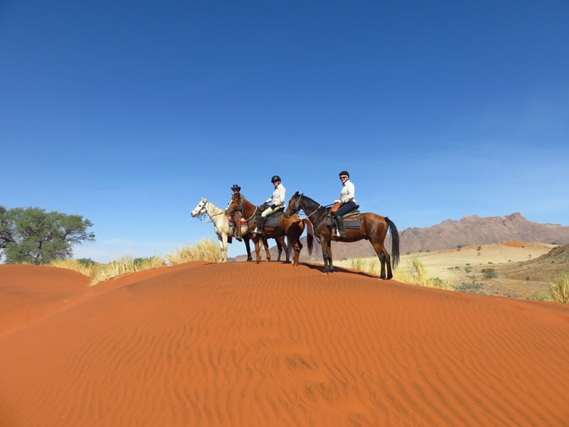 Horse Riding Safari - Red Dunes