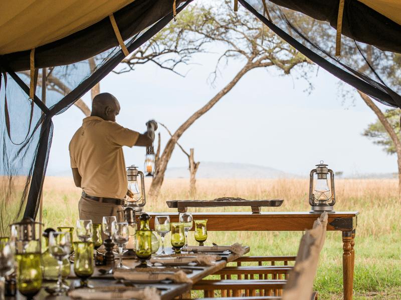 Ngorongoro, Serengeti And Mnemba