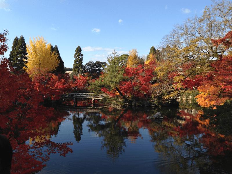 Twelve Months Travel – Part Two