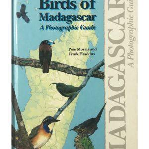 Birds Of Madagascar