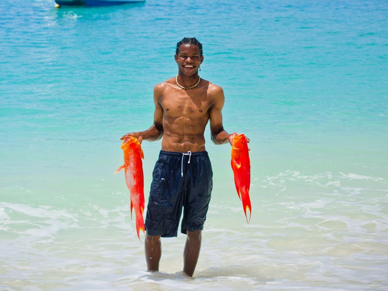 Unwind In The Seychelles - Catch Of The Day