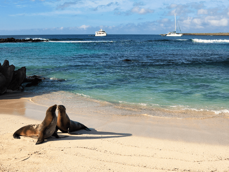 Ecuador and the Galapagos