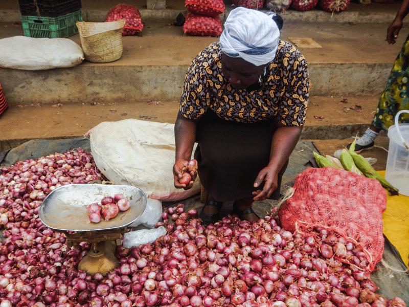 Lewa - Market Day