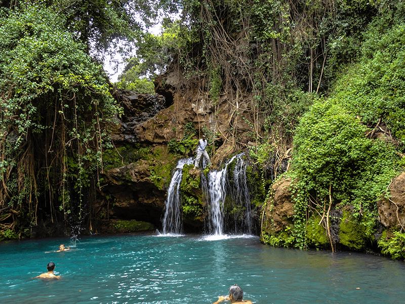 Lewa - Waterfall Swim