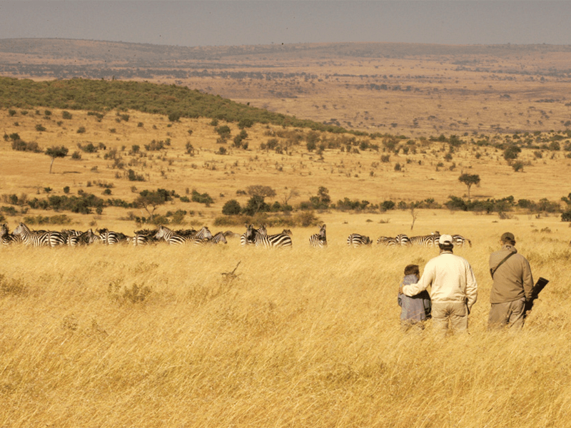 Maasai - Walking Safari