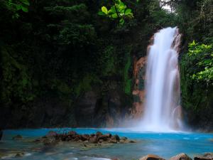 Costa Rica - Rainforest